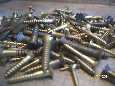 "150 - Vintage Solid Brass Wood Screws With The Flat Reg. Slot Head, 1/2""- 1 1/2"""