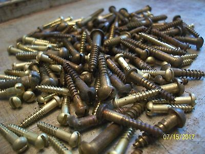 "135 - Vintage Solid Brass Wood Screws With Round, Reg. Slot Head's, 1/2""- 1 1/2"""
