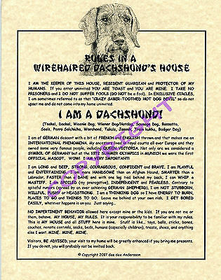 Rules In A Wirehaired Dachshund's House
