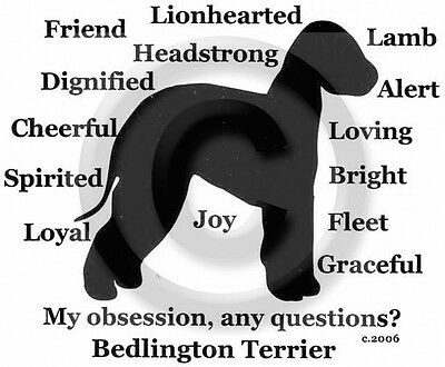 Bedlington Terrier Dog Obsession?  T-shirt SALE BLACK with silver LARGE one only