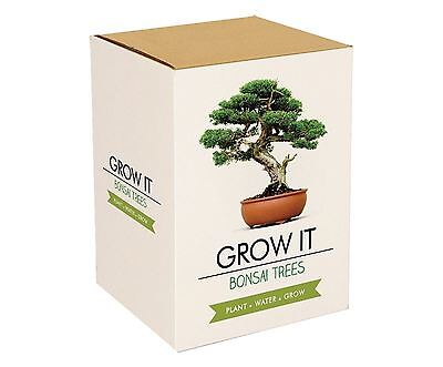Grow It Plant Your Own Indoor Bonsai Trees Seeds and Planters Office Gift Set