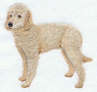 Embroidered Sweatshirt - Labradoodle C9652 Sizes S - XXL