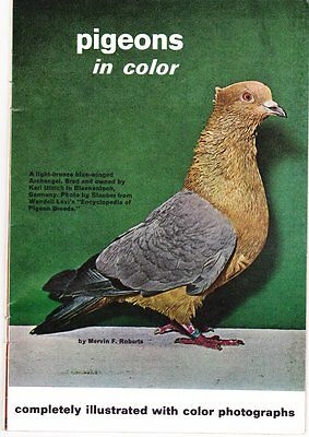 Pigeon Books, Magazines, Booklets~Some Very Old~Odd Assortment~Look