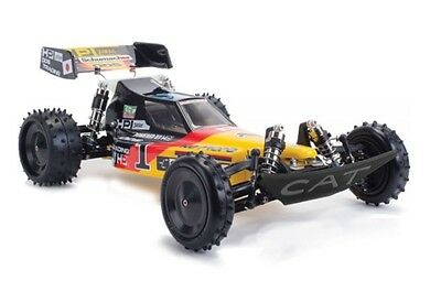 schumacher cat xls masami 1 10 scale off road racer rc car. Black Bedroom Furniture Sets. Home Design Ideas