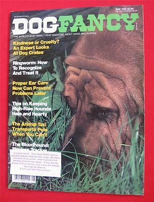 RARE Collectible ~ BLOODHOUND Issue ~ DOG FANCY Magazine ~ May 1984  #