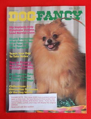 RARE Collectible ~ CHIHUAHUA Issue ~ DOG FANCY Magazine ~ April 1984