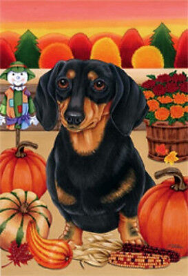 Garden Indoor/Outdoor Autumn Flag - Black & Tan Dachshund (TP) 670081