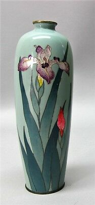 Very Fine Signed MEIJI-ERA JAPANESE CLOISONNE Vase w/ Iris  c. 1890  antique