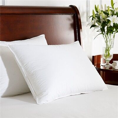 Pure White Duck Feather Twin Pack Standard Pillow with Pure Cotton Cover 48x73cm