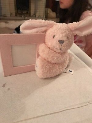 Brand New Pink Rabbit Photo Frame Baby Picture