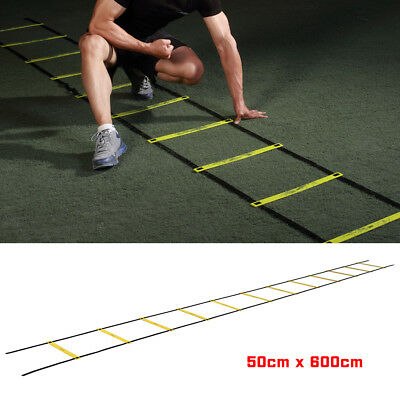 6M Speed Mens Agility Fitness Training Ladder Footwork Football 12-rung Soccer