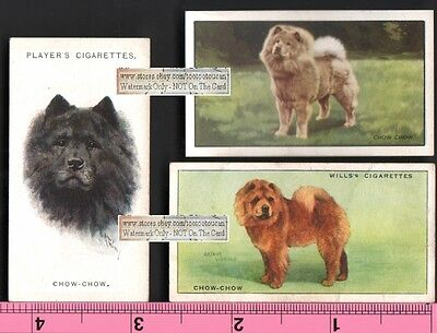 Chow Chow Dogs 3 Different 75+ Y/O Ad Trade Cards