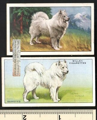 Samoyed 2 Different 75+ Y/O Ad Trade Cards