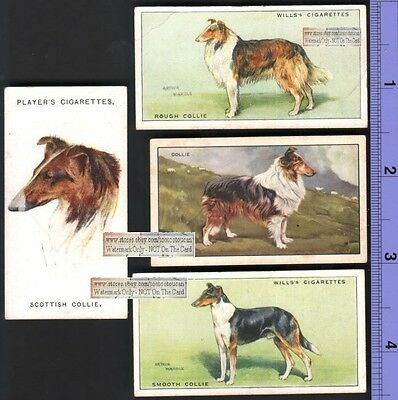 Collie Dogs 4 Different 75+ Y/O Ad Trade Cards