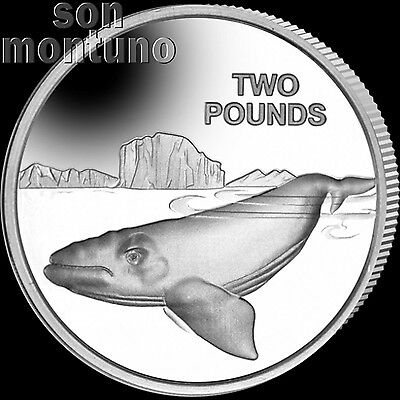 2017 SOUTHERN RIGHT WHALE - CuNi Copper Nickel Coin British Antarctic Territory