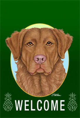 Large Indoor/Outdoor Welcome Flag (Green) - Chesapeake Bay Retriever 74070