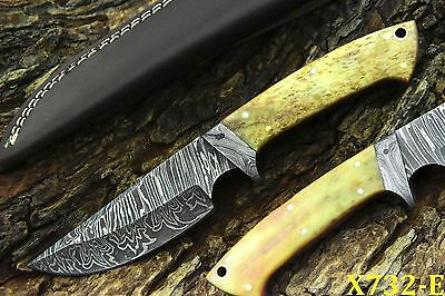 Custom Damascus Hunting Knife Handmade With Camel Bone Handle (X732-E)
