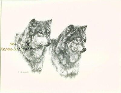 # 125 2 (two) WOLVES  wildlife  art print * pen & ink drawing by Jan Jellins
