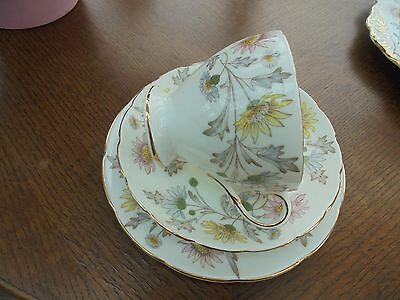 Foley Bone China SOMERSET By Donald Brindley - Cup Saucer & Plate