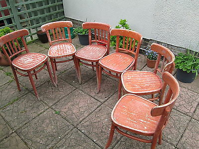 Vintage Cafe Chairs Polish Bentwood x6