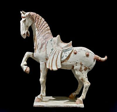 Large and Impressive Chinese Horse - Tang Dynasty