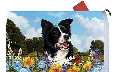 Mail Box Cover - Border Collie 56030