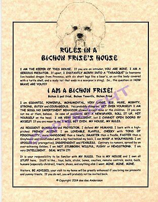 Rules In A Bichon Frise's House