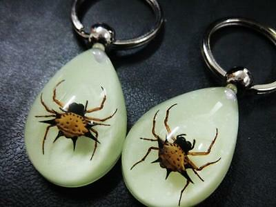 30 pcs POP Key ring Real gold spider glow in dark key-chains