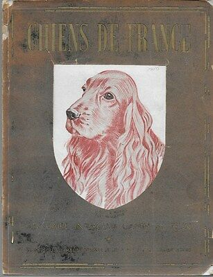 Chiens De France Dogs Of France French Canines & Fashion May 1950 Illustrated