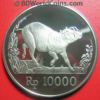 1987 INDONESIA 10000 RUPIAH SILVER PROOF WILD PIG WARTHOG WILDLIFE 36mm RARE!!!