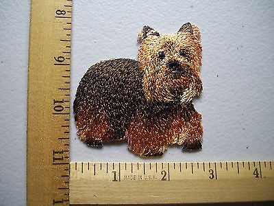 One Beautiful Silky Dog Terrier Iron On Patch