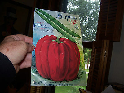 Reproduction Of A Burpee's Seed's Grow Tin Sign Chinese Giant Pepper