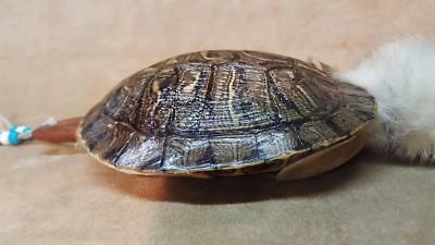GENUINE Large Red Slider Turtle Shell Rattle Native American Morocco Feathers ++