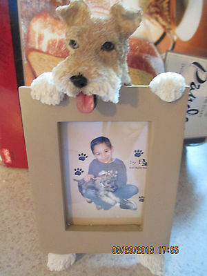 wire fox terrier    picture frame 15- 56