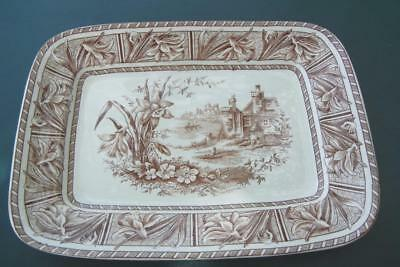 """Antique 15 3/4"""" Grindley Daffodil Pattern Brown & White Transfer Ware Platter"""