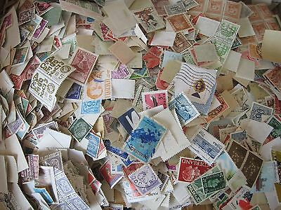 1000 World-Wide Stamp Lot Off Paper