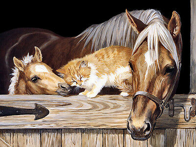 """HD Canvas Print Horse and Cat Oil painting Printed on canvas 16""""x20"""" L486"""