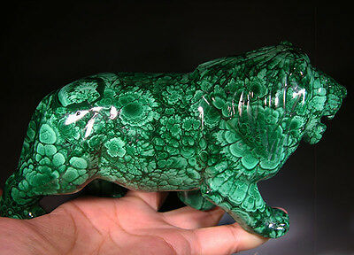 """6.9"""" Huge Natural Green Malachite Crystal Carving Lion King from Africa Congo"""