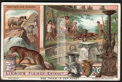 Panther And  Ram Used In Art Artist Animals  NICE c1903 Trade Ad Card