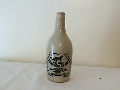 Fox Conoy Ginger Ale Springwater Bottle Pottery Jug Stoneware Washington DC