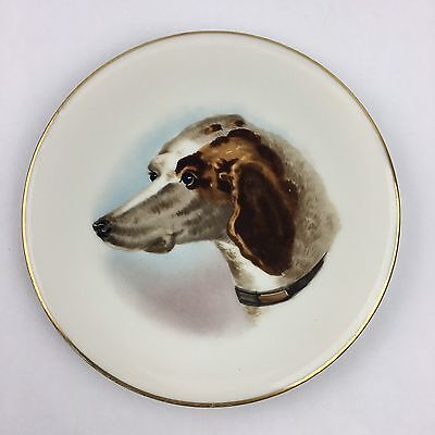 Brittany Spaniel Dog Plate Collectible Gold Hunting Dog 9""