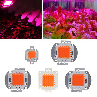 10W-100W Full Spectrum High Power LED 380NM-840NM Chip Plant Grow Light  Growth