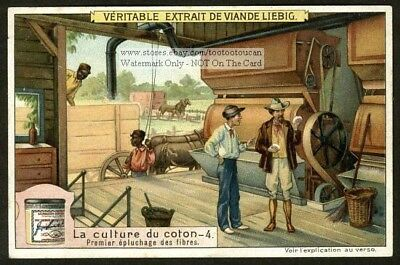 Southern Cotton Merchant Buying Cotton In Warehouse  c1910 Trade Ad Card