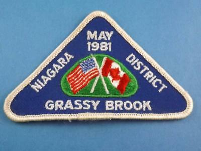 Nmra Grassy Brook Division Patch Vintage  Ontario Usa Can. Model Train Collector