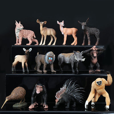 12 Type Realistic Animal Model Room Ornament Collect Education Toy Gift UK