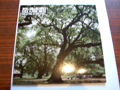Noel Gallagher's High Flying Birds-The Dying Of The Light 7 Single NEW 2015