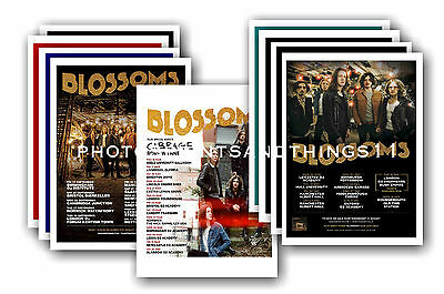 BLOSSOMS  - 10 promotional posters  collectable postcard set # 1