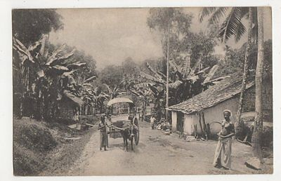 Ceylon, Village Scene, Postally Used Postcard, B239