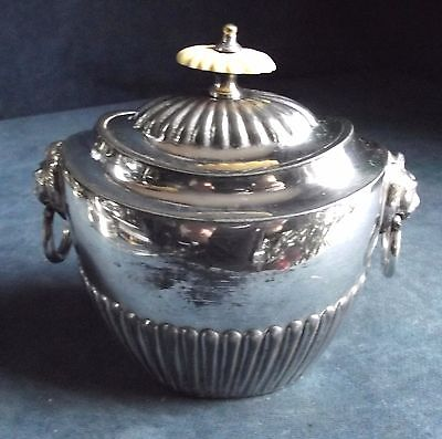 GOOD ~ SILVER Plated ~FLUTED Tea CADDY ~ c1900 by Barker Bros