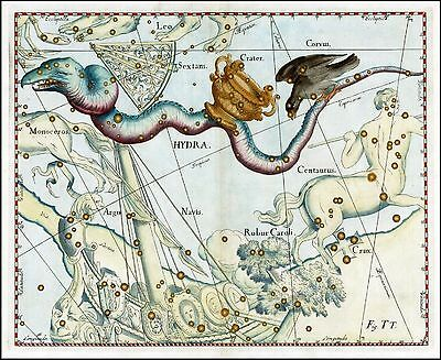 1687 old CELESTIAL MAP constellation Hevelius HYDRA CROW CRATER raven zodiac 9